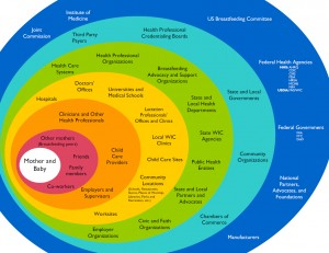 Breastfeeding Support Circles